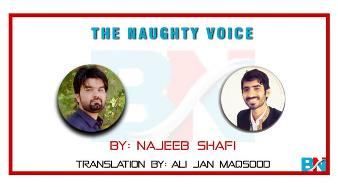 The Naughty Voice